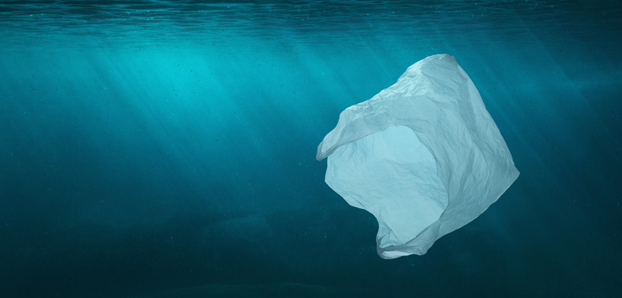 Protecting our seas, shore and wildlife by combatting plastic pollution