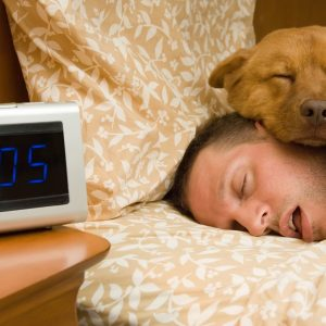 Are our dogs really a suitable sleep companion?